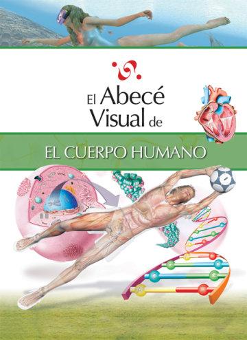Cover El abecé visual del cuerpo humano