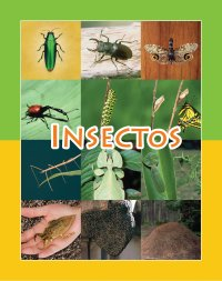 Cover Insectos