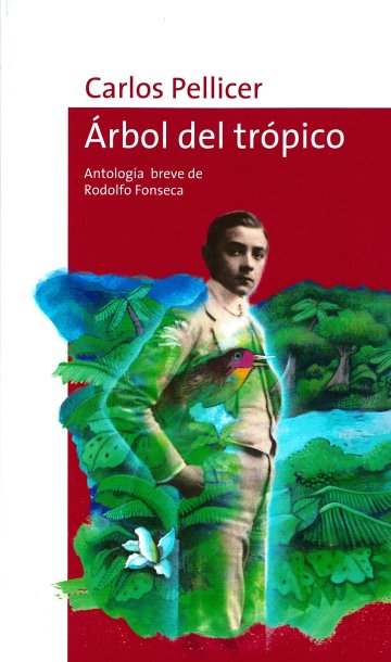 Cover Árbol del trópico